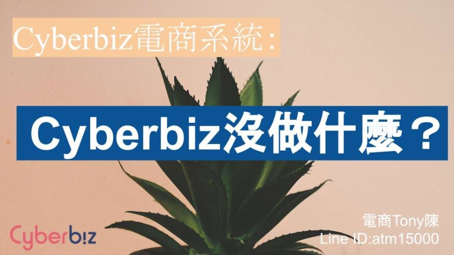 Cyberbiz電商系統。我們「沒有」做什麼服務?