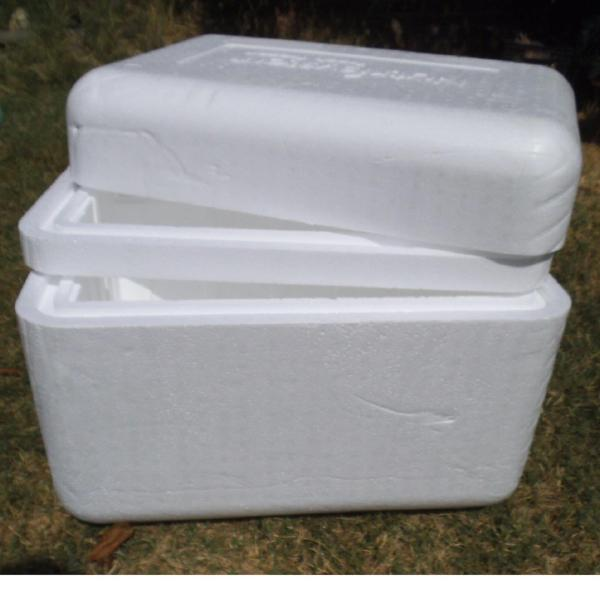 Insulated Styrofoam Shipping Coolers