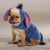 NWT TOP PAW *DISNEY* EEYORE DOG / PET COSTUME FROM WINNIE ...