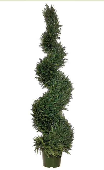 Home Accents 2 Piece Spiral Trees