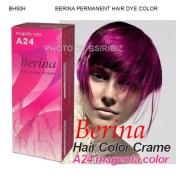 berina permanent hair dye color