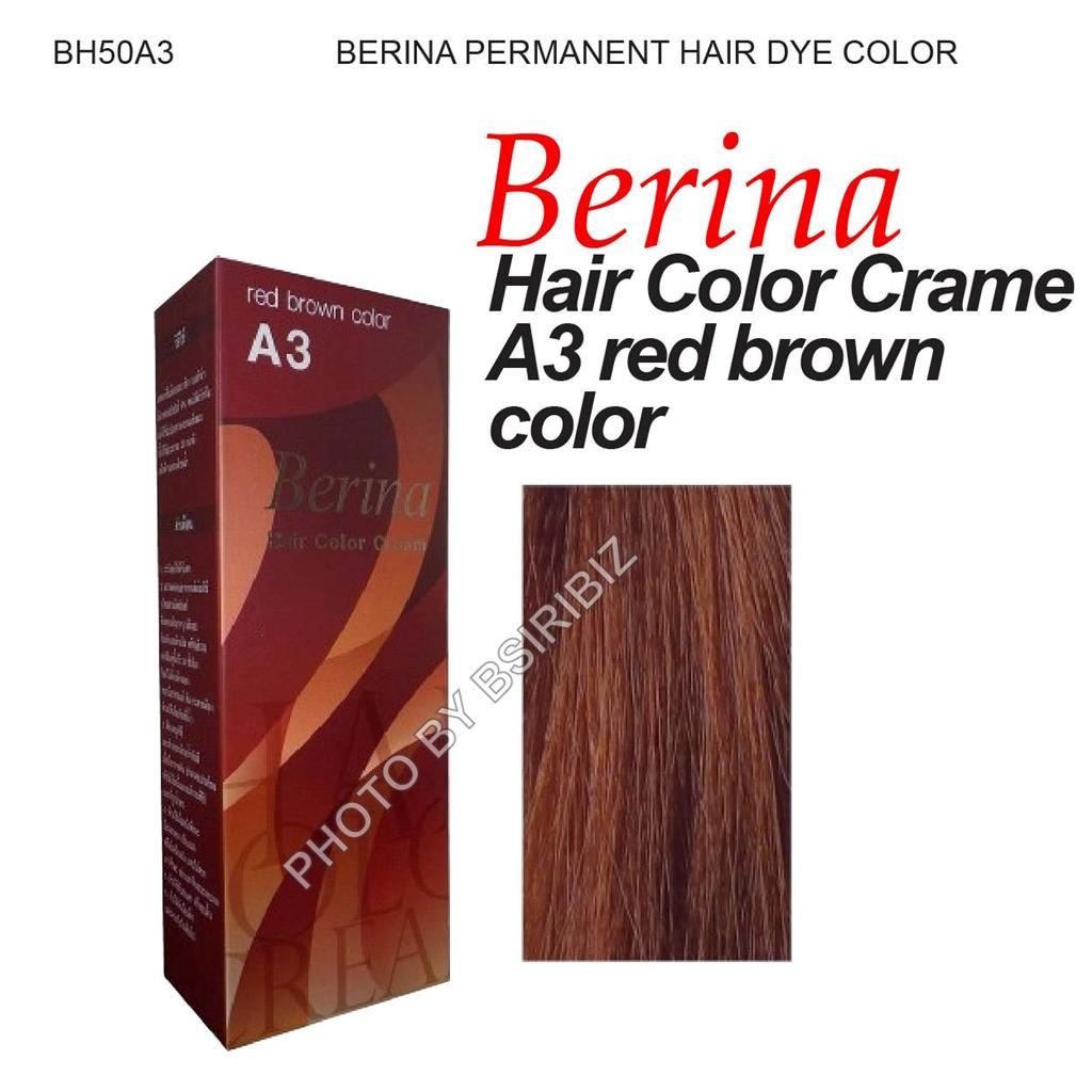 Berina Permanent Hair Dye Cream Color Colour Fashion Violet Black Brown Shade