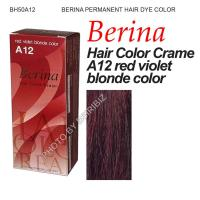 BERINA Permanent Hair Color dye Punky Cream FASHION ...