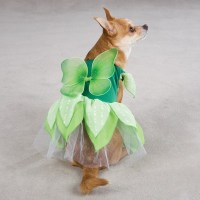 Dog Fairy Tinker Bell Halloween Costume Green Pink XS L | eBay