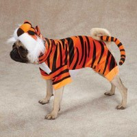 Dog BENGAL BUDDY Tiger Bengals Halloween Costume ...