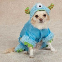 Dog MONSTER PAWS Halloween Costume Pet Clothes One Eye XS ...