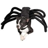Dog Grrr TARANTULA SPIDER Black Clothes Halloween Costume ...