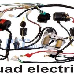 Gio Electric Scooter Wiring Diagram How To Wire A Ring Main Atv Harness All Data