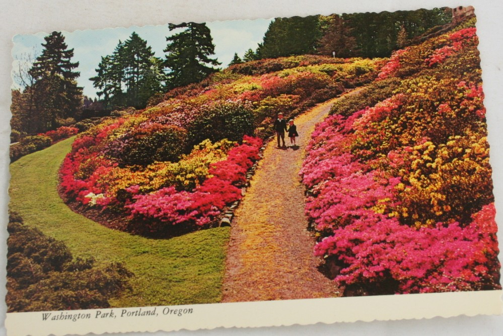vintage postcard, Portland, Oregon