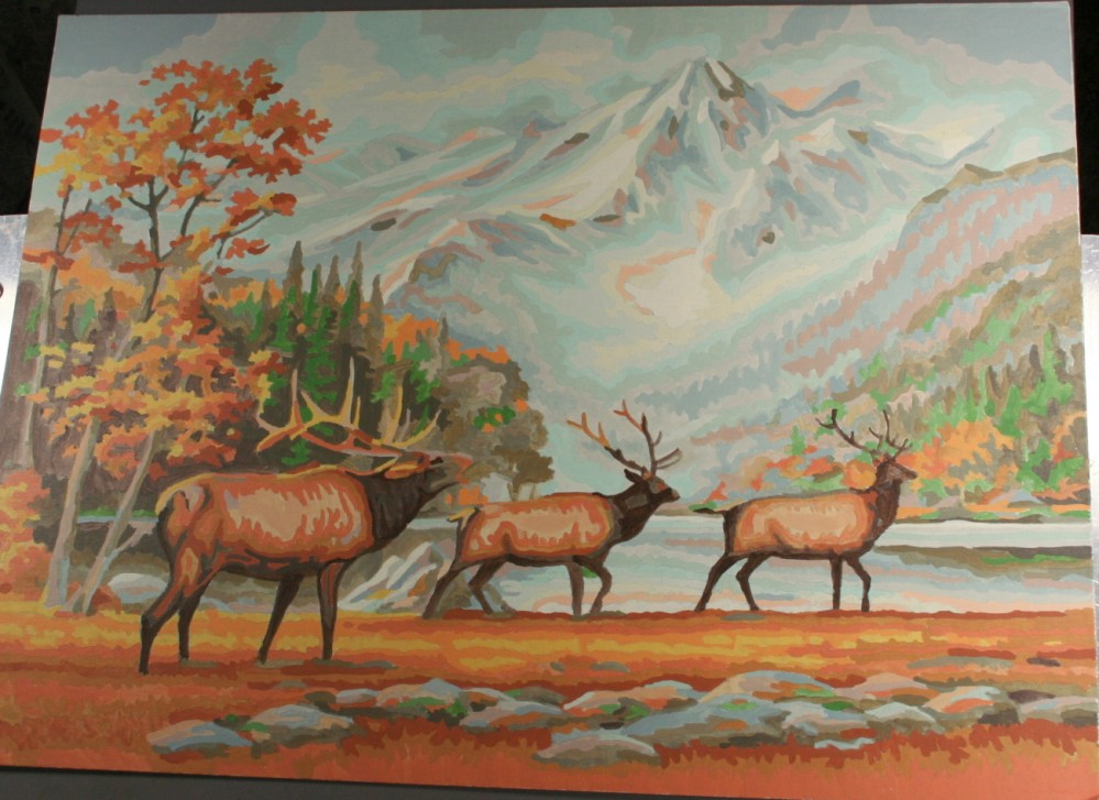 vintage paint by number, completed, finished, elk, deer, stream, mountain