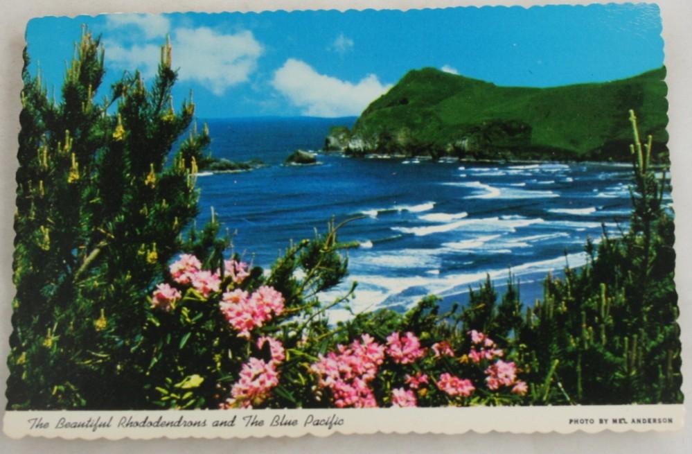 vintage postcard, Oregon, coastline, rhododendrun, Pacific
