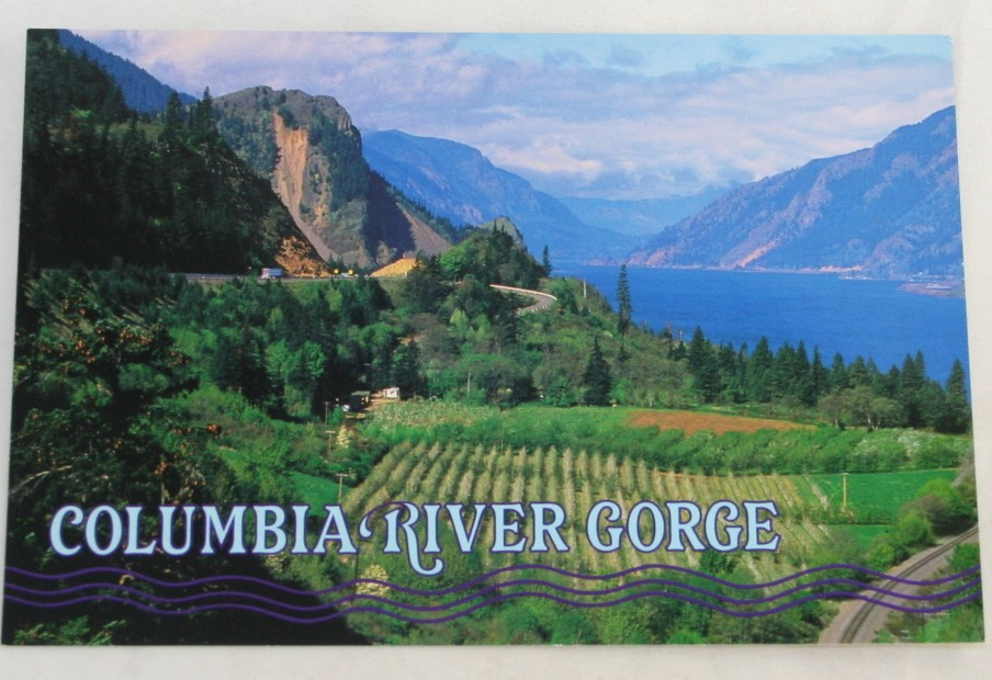 vintage postcard, Columbia River Gorge, Washington, WA Oregon, OR