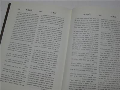 Tzohar Latevah צהר לתבה : אוצר מהתלמוד הבבלי ומדרשי
