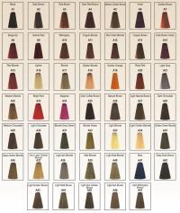 Berina Hair Colour permanent cream hair dye 30 colors | eBay
