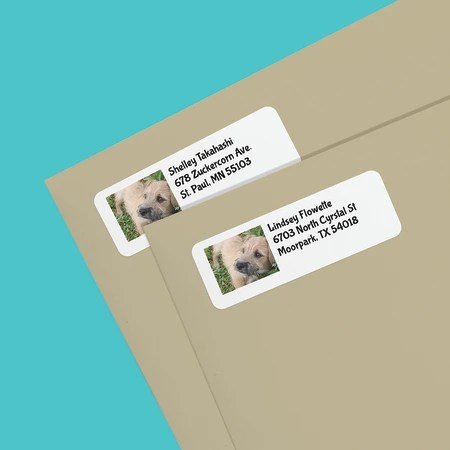 create photo address labels