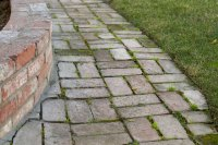 How to Remove Mold & Algae From Brick Pavers (with ...