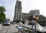 Notre-Dame, des dérogations sur l'environnement en question