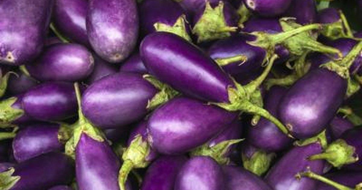 Purple Foods List  LIVESTRONGCOM
