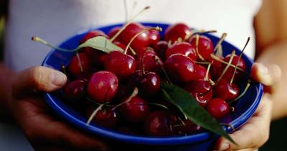 How Many Calories Do Bing Cherries Have  LIVESTRONGCOM