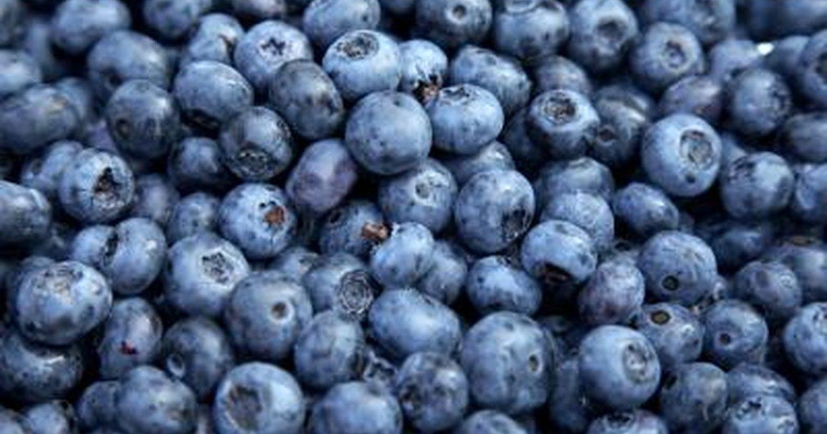 Blueberries and Diarrhea | LIVESTRONG.COM