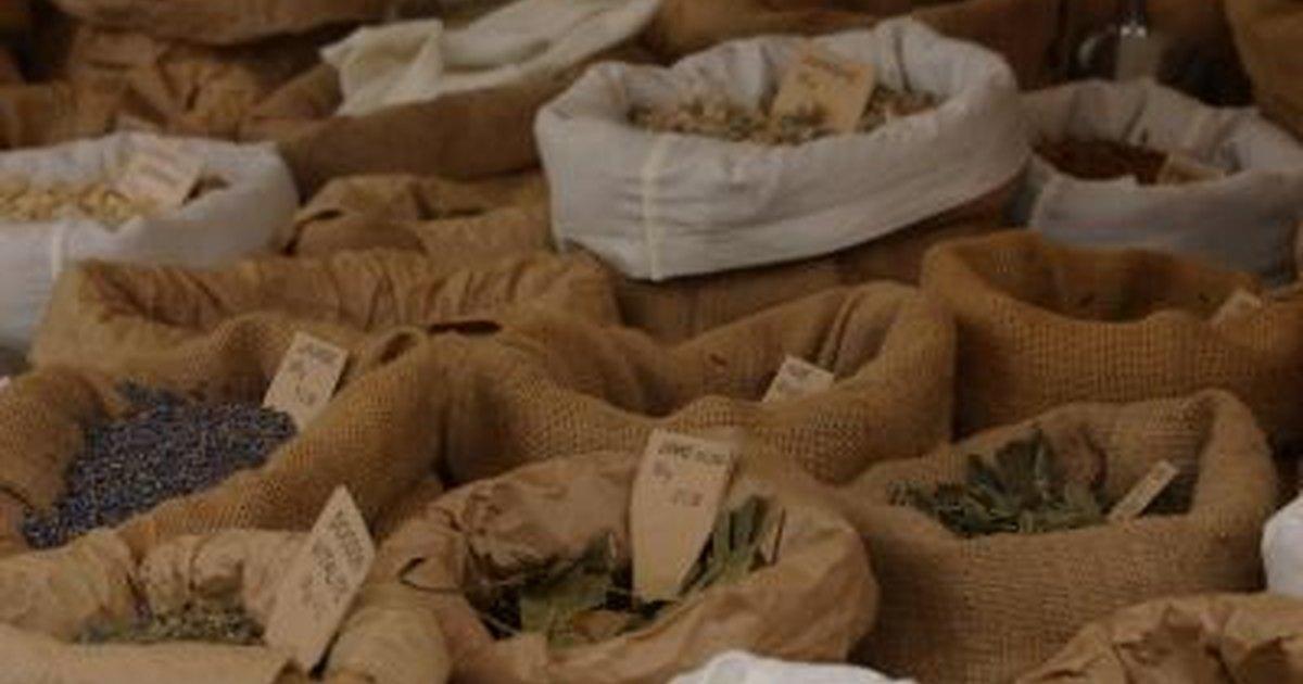 Nutritional Value of Moringa Seeds  LIVESTRONGCOM