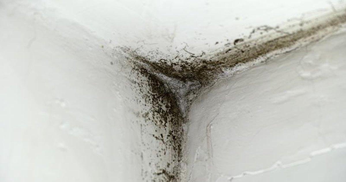 Toxic Mold Symptoms And Symptoms