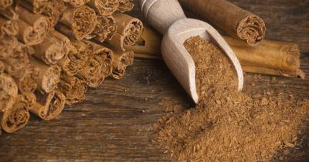 Cinnamon Powder Side Effects  LIVESTRONGCOM