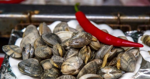 How to Cook Middle Neck Clams LIVESTRONGCOM