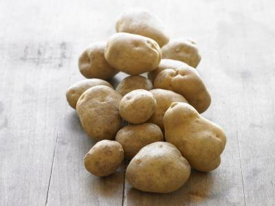 Potatoes belong to the nightshade family