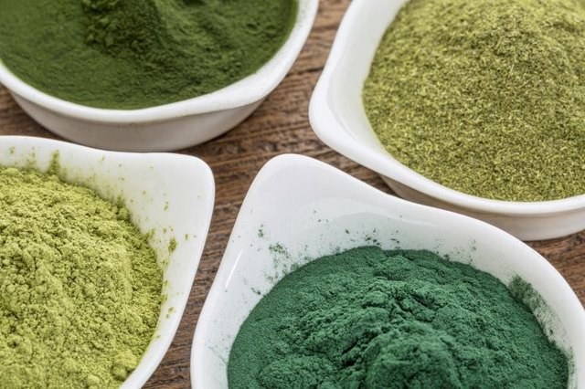 Image result for wheatgrass powder
