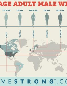 Global comparison of average adult male weight also what is the height and livestrong rh