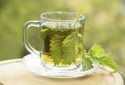 Nettle Tea Benefits and Warnings