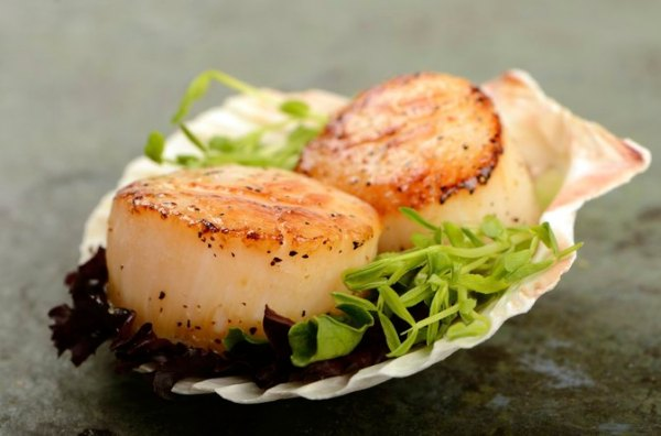 The Best Way to Defrost Frozen Sea Scallops LIVESTRONGCOM