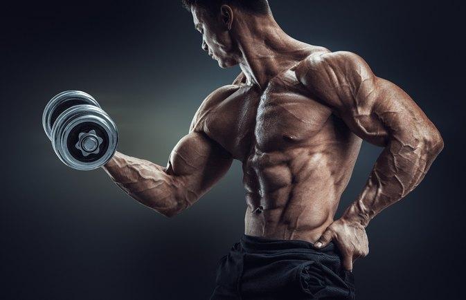 bodybuilding 的圖片搜尋結果