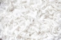 Allergies From Feather Pillows | LIVESTRONG.COM