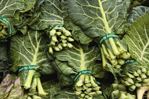 12. Leafy Greens: Lettuce, Green Collards and Kale