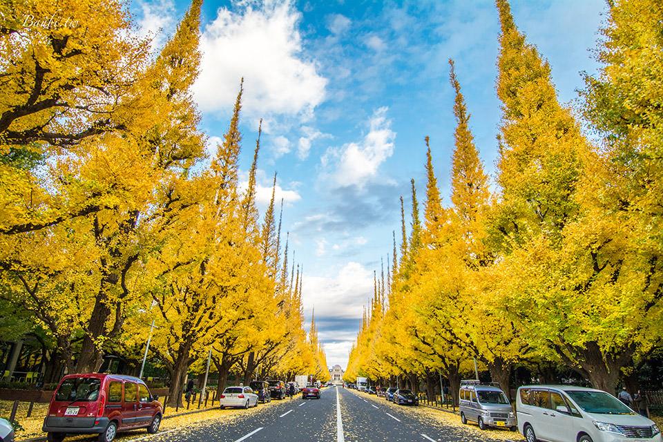 東京明治神宮外苑銀杏並木 超美的金黃色世界,壯觀銀杏走廊地毯(更新2018.11銀杏情況 - Banbi 斑比美食旅遊