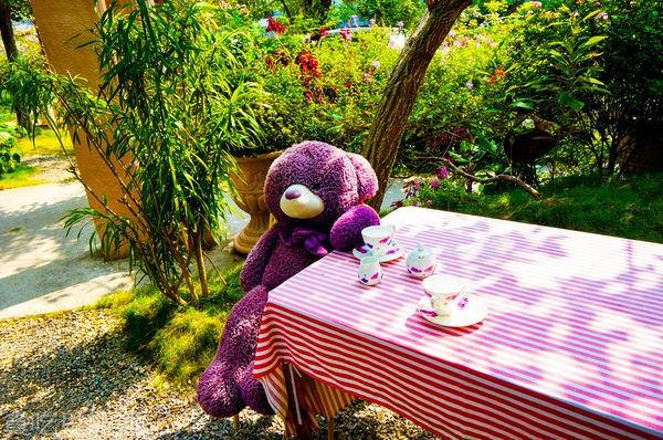 【旅遊】 台中旅遊 /Buka這一隻熊