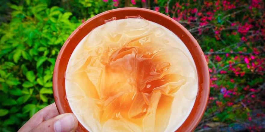屏東霧台美食 摩凱咖啡-櫻花樹下吃特別風味的愛玉