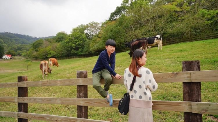 苗栗親子旅遊 飛牛牧場-戶外大空間,親子一起在山上餵動物群們