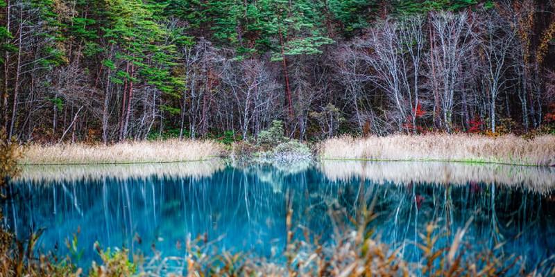【福島】。熱門!東北紅葉景點「五色沼風景」毘沙門沼楓葉照片