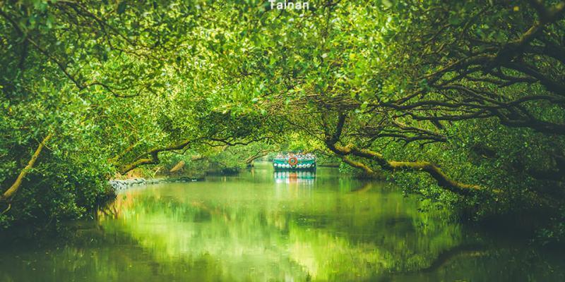 【台南】。四草綠色隧道拍攝+台南日式建築彩色鹽《夕遊出張所》