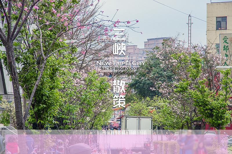 【台北】。三峽粉色櫻花老街! 巴洛克建築『三峽老街』巡禮