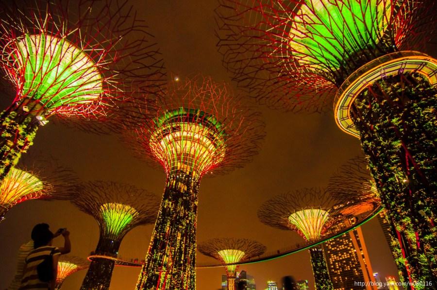 【新加坡】。越夜越美麗Gardens by the Bay +金沙酒店音樂水舞秀
