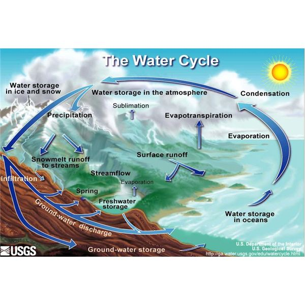water cycle diagram with questions 2001 chevy blazer engine a helps to answer the question how does 3
