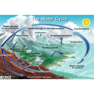 A Water Cycle Diagram Helps to Answer the Question, 'How