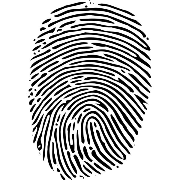 Explaining Biometric Fingerprint Identification and How It