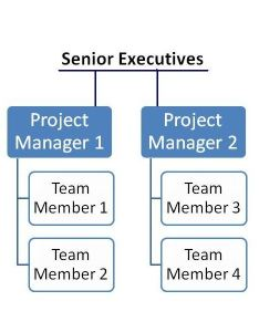 Projectized organizational structure also optimized project management environments rh brighthubpm