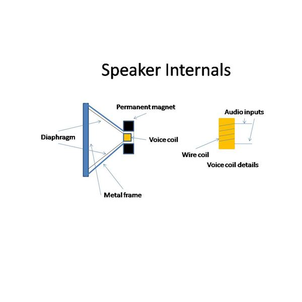 How do Speakers Work? The Basics of Sound Production