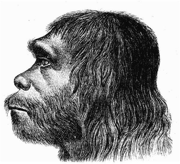 Neanderthal Genome Explored Could Genetic Engineering